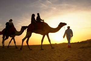 Facts About the People in the Arabian Desert