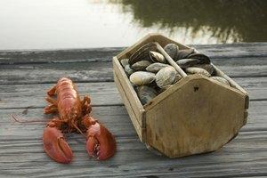 Lista de alimentos que un pescetariano puede comer