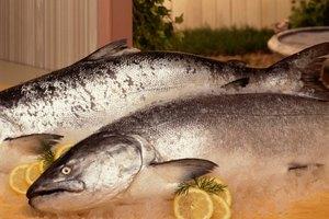 Cómo cocinar un salmón entero al horno