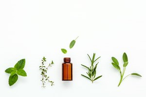 What Are the Benefits of Green Tea Essential Oil?