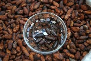Storage & Shelf Life of Raw Cacao Beans