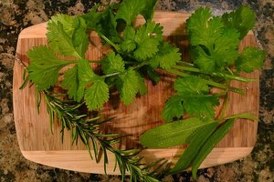 How to Detox Naturally From Mycotoxins Using Herbs