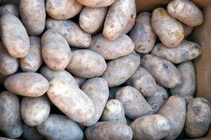 How to Boil Idaho Potatoes