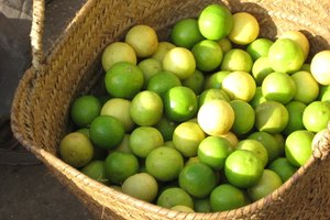 How to Keep Limes Fresh