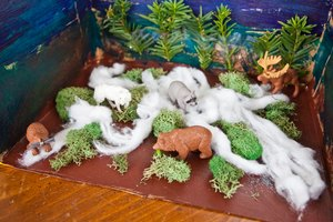 How to Make a Taiga Diorama