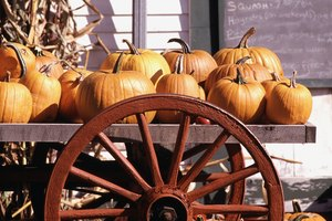 Fresh, whole pumpkins keep for months.