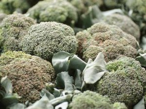 Types of Broccoli