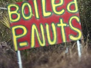 Healthy Boiled Peanuts vs. Dry Roasted
