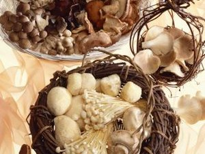 The Benefits of Mushrooms in Foods