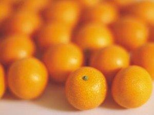 Do Mandarins Have Fiber?