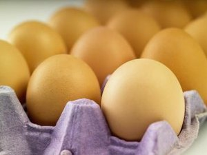 Will Eating Raw Eggs Make You Sick?