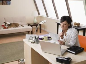 Disadvantages of Bringing a Companion Animal to the Workplace