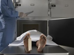 Morgue Photography Careers