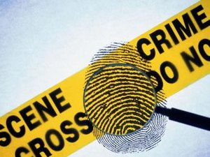 What Is a Forensic Sociologist?