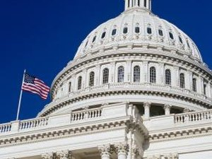 What Is a Chief Lobbyist?