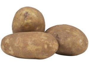 Growing Potatoes in Bags Vs. Barrels