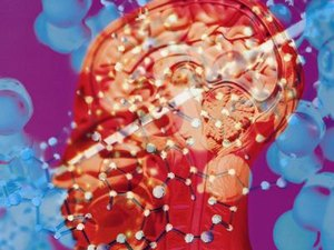 Jobs Involved With Cognitive Psychology