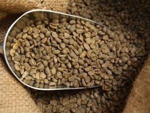 Coffee Futures Trading Basics