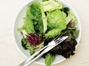 Is Lactose in Lettuce?