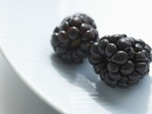 The Health Benefits of Youngberry