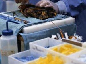 Forensic Autopsy Technician Schools