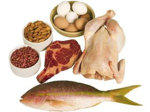 Does the Body Need Protein to Burn Fat?