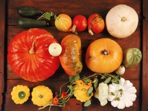 Pumpkins & Fiber