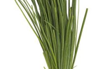 Antioxidants Found in Chives