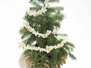 Cheap Ways to Decorate Your House for the Christmas Season