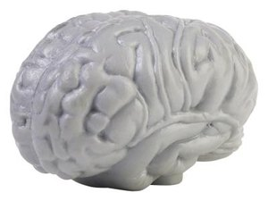 Food for Brain Enhancement