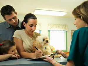 Veterinary Receptionist Training