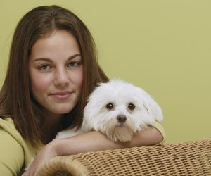 How to Get Stains Out of Dog Fur | Dog Care - Daily Puppy