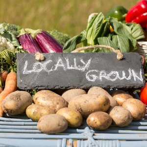 Publicly Traded Organic Food Companies