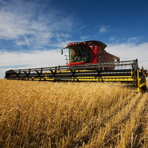 How to Become an Agricultural & Farm Machinery Appraiser