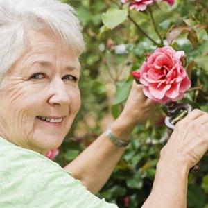Renting Vs. Buying for Senior Citizens