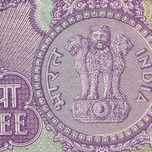 What Is an RBI Bond, and How Does It Work?
