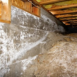 Can I Deduct Mold Remediation Expenses?