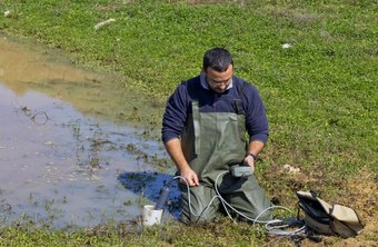 Water testers often work in swampy environments.