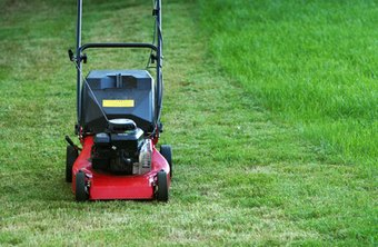 You can start your own business with tools you already own, including a lawnmower.