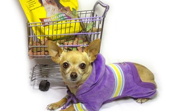 Pet supply stores stock food and clothing for small and large dogs.