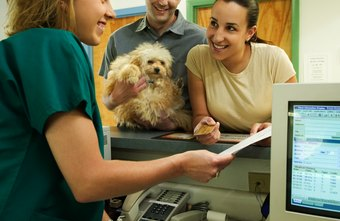 Vet receptionists are multi-taskers.