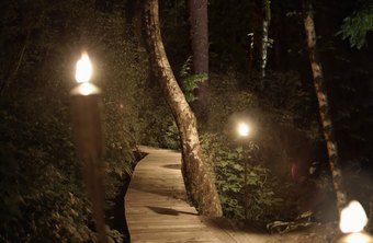 A landscape lighting design can resemble a work of art.