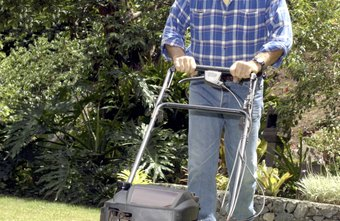 You must register your lawn service with your state and federal government.