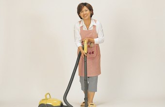 Maids and house cleaners earned a mean annual wage of $21,440 in May 2011.