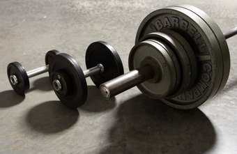 The simplicity of dumbbells and barbells does the trick.