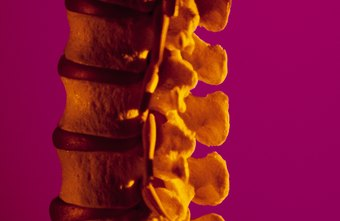 Understanding the physiology of a disc herniation can be empowering.