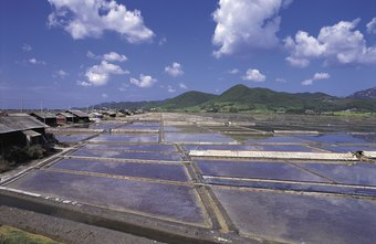 A fish farm can be located under a roof or open to the elements, depending on your goals and local climate.