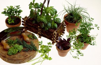 One market consists of people who need potted plants for their window gardens.