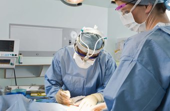 Perioperative nurses play a crucial role in surgical patient care.