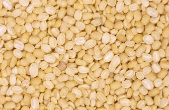 Lentils are an excellent source of fiber that can be incorporated into a healthy diet.